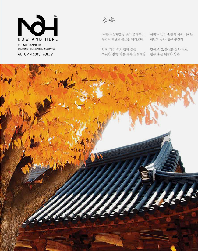 2013_10_NAH_Cover_s